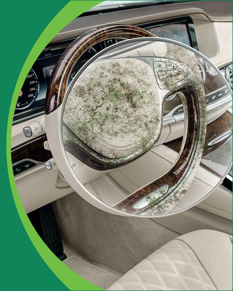 Autó fertőtlenítés vírus, baktérium eltávolítás bactakleen